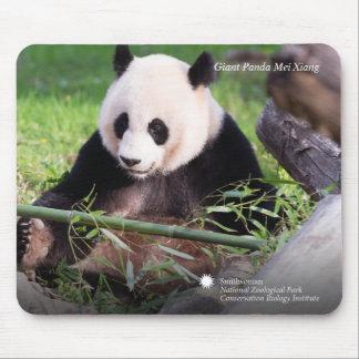Reuze Panda Mei Xiang Muismatten