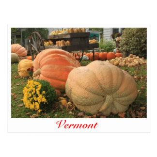 Reuze Pompoenen in Vermont Briefkaart