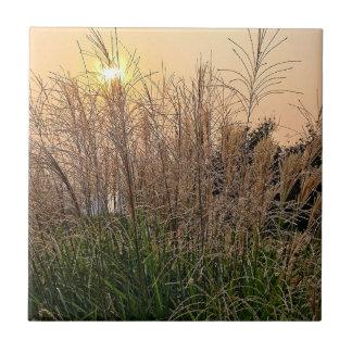 Riet bij Zonsondergang Keramisch Tegeltje