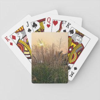 Riet bij Zonsondergang Pokerkaarten