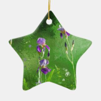 Rij van Irissen Keramisch Ster Ornament
