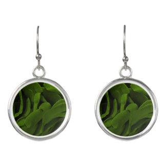 Rijke de bloemfoto van olijf groene fluweelachtige