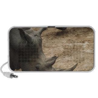 Rinoceros Speaker