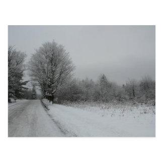 Road van Mountian van Stannard, Vermont Briefkaart