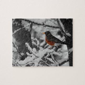 Robin in Kleur op Zwart-witte Achtergrond Puzzels