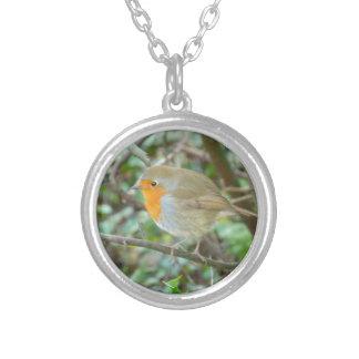 Robin Necklace Zilver Vergulden Ketting