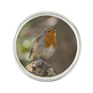 Robin Reverspeldje