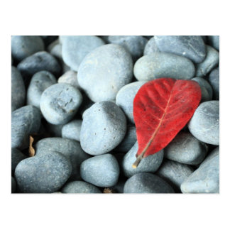 Rode blad en stenen briefkaart