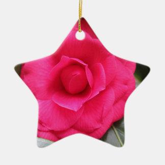 Rode bloem van japonica Rachele Odero van de Keramisch Ster Ornament