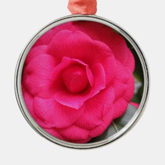 Rode bloem van japonica Rachele Odero van de Zilverkleurig Rond Ornament