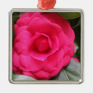 Rode bloem van japonica Rachele Odero van de Zilverkleurig Vierkant Ornament