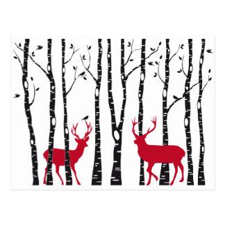 Rode deers in het bos van de berkboom briefkaart
