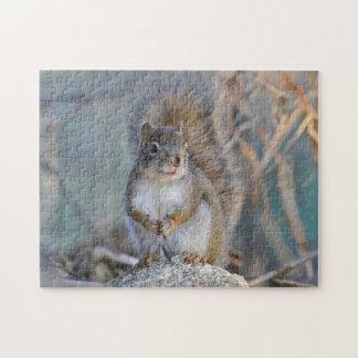 Rode eekhoorn puzzel