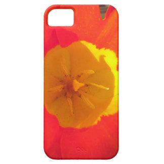 Rode en gele open tulpenbloem barely there iPhone 5 hoesje