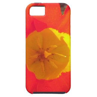 Rode en gele open tulpenbloem tough iPhone 5 hoesje