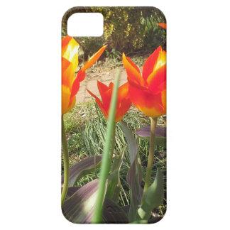 Rode en Gele Tulpen Barely There iPhone 5 Hoesje