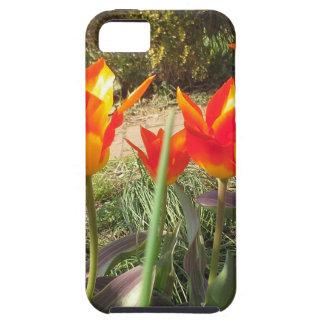 Rode en Gele Tulpen Tough iPhone 5 Hoesje