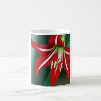 Rode Lelie Koffiemok