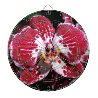 Rode Orchidee Dartbord