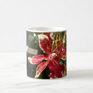 Rode Orchidee de Mok van 11 oz