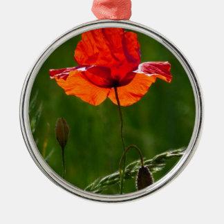 Rode papaver in de zomer 02 zilverkleurig rond ornament
