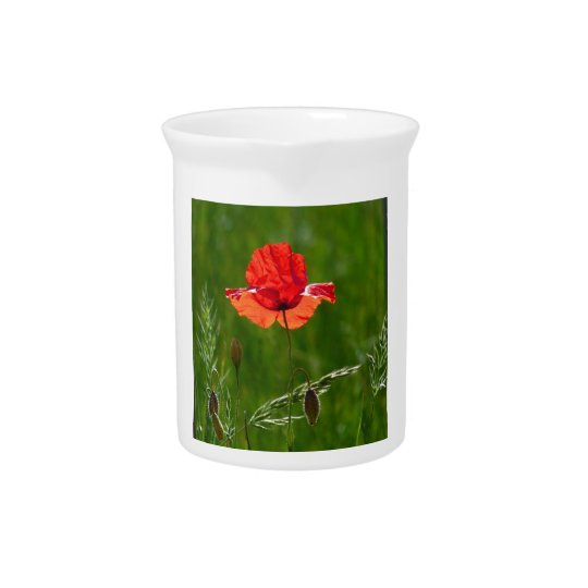 Rode papaver in de zomer drink pitcher