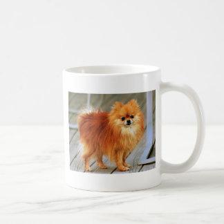 Rode Pomeranian Koffiemok
