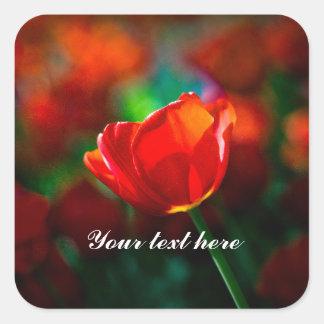 Rode tulp - Geheimzinnigheid van het bloeien Vierkante Sticker