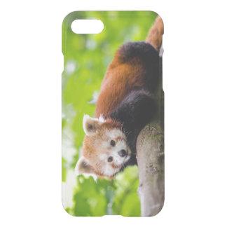 Rode Wasbeer iPhone 8/7 Hoesje