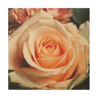 Romantisch nam Roze toenam toe Foto Op Hout