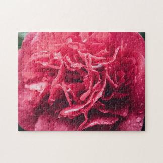 Romantische Roze Close-up   van de Bloem Raadsel Puzzel