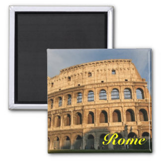 Rome colosseum refrigerater magneet