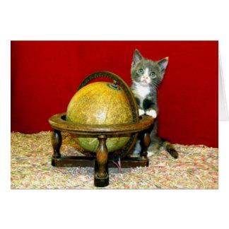 Rond het Wenskaart van het Kat van de Redding van