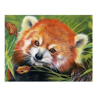 Rood dierlijk de kunstbriefkaart van de Panda Briefkaart