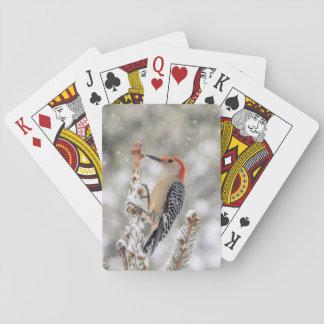 Rood-doen zwellen Specht in de sneeuw Pokerkaarten