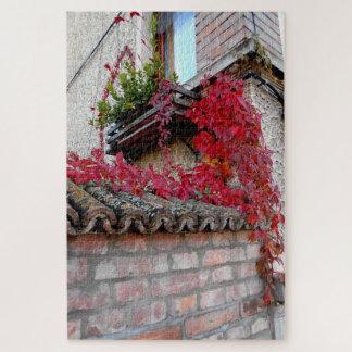Rood Lopend Plant en het Venster Puzzel