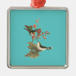 Rood-Throated Kolibrie (colubris Trochilus) Ornamenten
