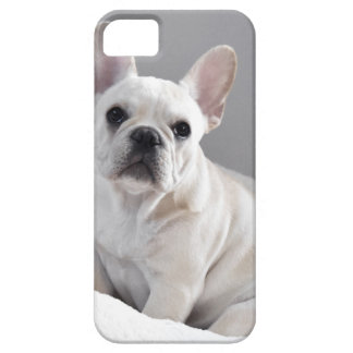 Room Frenchie Barely There iPhone 5 Hoesje