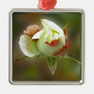 rosebud het gloeien zilverkleurig vierkant ornament