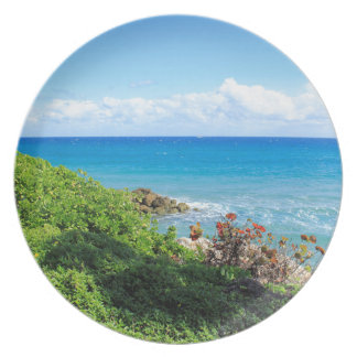 rotsachtig-gebladerte-kust-deerfield-strand-4s6490 melamine+bord