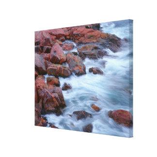 Rotsachtige oever met water, Canada Canvas Afdrukken