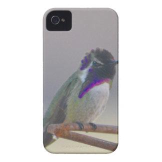 Royalty iPhone 4 Hoesje