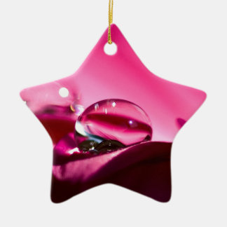 Roze Daling Keramisch Ster Ornament