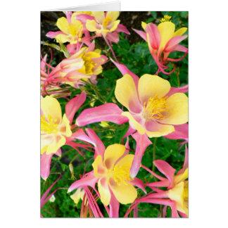 Roze en Gele Akeleien Briefkaarten 0
