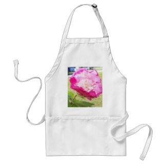 roze en witte veranderlijke hibiscusbloei standaard schort