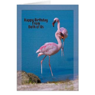Roze Flamingo's bij het Meer Kaart