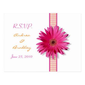 Roze Gerbera Daisy Plaid Ribbon RSVP Postcard Briefkaart