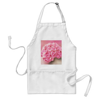 roze hydrangea hortensia in bloei standaard schort