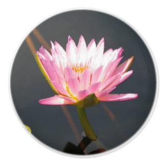 Roze Lotus Waterlily Keramische Knop