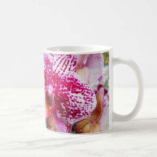 Roze Orchideeën Dendrobium Koffiemok